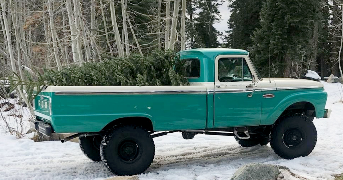 1960s Ford F250 Out For a Drive To Get The Christmas Tree.jpg