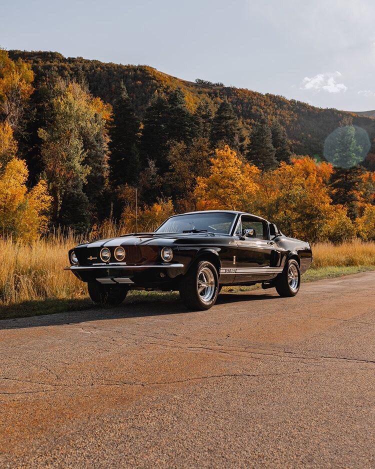 1967 Ford Mustang Fastback GT500 2.jpg