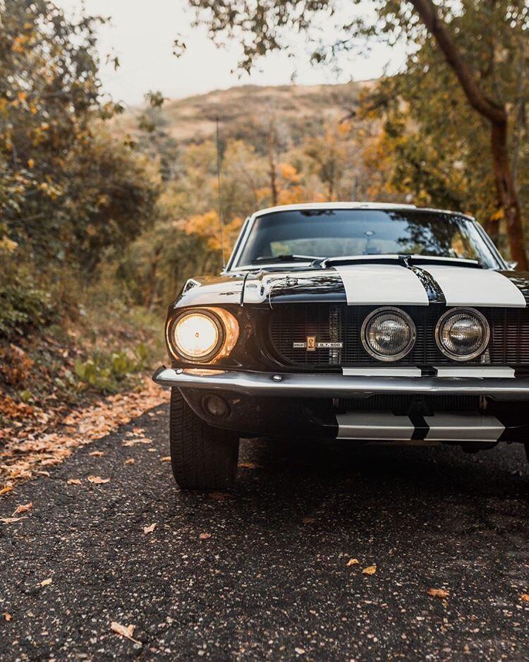 1967 Ford Mustang Fastback GT500 7.jpg