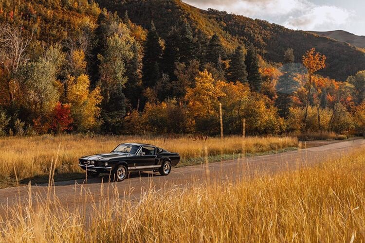 1967 Ford Mustang Fastback GT500 8.jpg