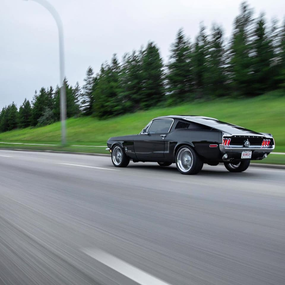 1968 Ford Mustang Fastback www.FordDaily.net 6.jpg
