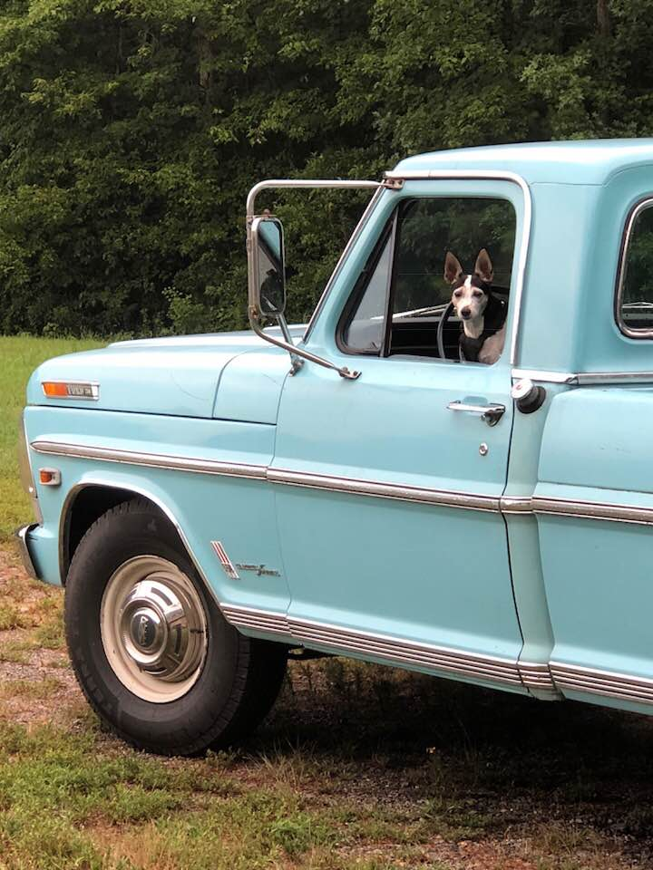 1969 F-250 Ranger Camper Special With The Explorer Package 8.jpg