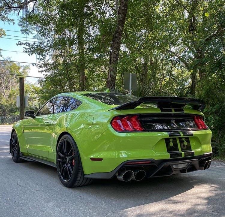 2020 GT500 Supercharged 5.2 Predator 5.jpg