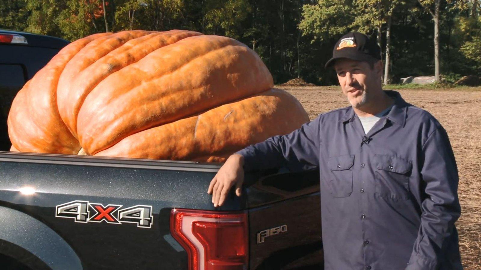 Ford F150 Hauling 1,200 Pound Giant Pumpkin 4.JPG