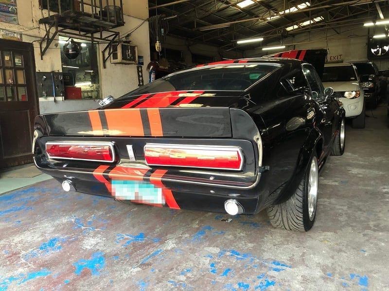 Mustang back_0.jpg